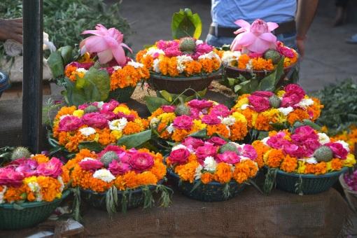 India_April2019_0141