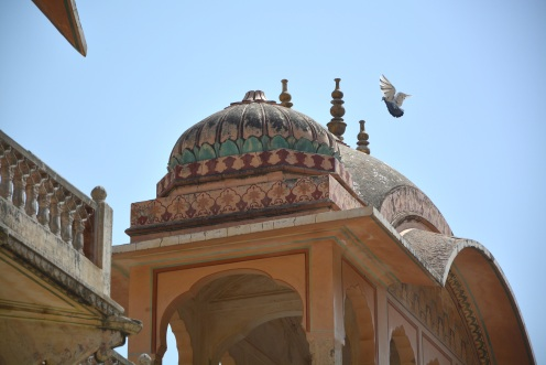 India_April2019_0850